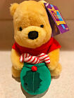 Disney Christmas Winnie the Pooh Pooh 100 Acre Collection Plush Candy 65in