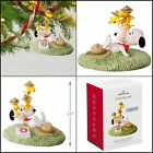 Hallmark Keepsake Christmas Ornament 2018, The Peanuts Gang First Aid Lessons