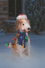 3 D Outdoor Christmas Decorations 24 Fluffy Dog w String Lights Yard Sculpture