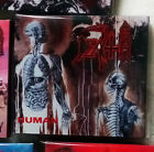 Death 3CD Remasters Numbered COMPLETE SET Spiritual Healing, Human, Leprosy