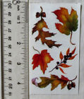 Frances Meyer FALL LEAVES Strip of Vintage Fall Leaves Stickers