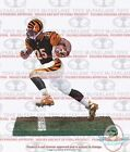 2015 McFarlane NFL 36 Sports Picks Figures 21
