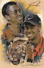 Tiger Woods Subject of New Comic Book 8
