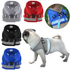 Pet Puppy Harness Breathable Mesh And Leash Set Vest Chest Strap For Small Dog