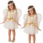 Kids Toddler Angel Costume Girls Christmas Nativity Fancy Dress Outfit Kids
