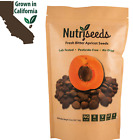 Nutriseeds Fresh Bitter Raw Apricot Seeds 32oz 100% Natural Non-GMO  Kernels