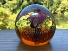 Vintage signed Caithness Paperweight