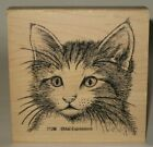Mail Expressions Rubber Stamp Kitty Cat Face Wood Mount 4 x 4