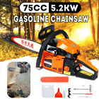 52KW 75cc Chainsaw Strong Power Gasoline Chain Saw Tree Cutting Machine
