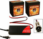 BC2403 Charger + 2 VMAX V06 43 12V 6AH Battery for Razor E100 Electric Scooter