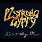 12 Strung Gypsy - TRIAL BY FIRE cd