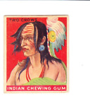 SUPER COLORFUL CLEAN 1933 Goudey Indian Gum 141 TWO CROWS PRICED TO SELL