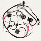 Buggy Complete Electrics GY6 Engine 150CC 125CC Wiring Harness Kit 8 coil Stator