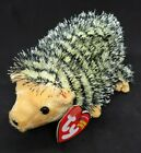 TY 2004 CHUCKLES the HEDGEHOG BEANIE BABY - MINT with MINT TAGS