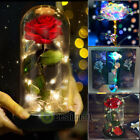 24K Gold Enchanted Eternal Rose LED Galaxy Rose with Flower Foil Flower In Dome