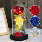 RECUTMS Galaxy Enchanted Red Rose Silk Rose Under Glass Dome with Led Light