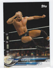 2018 Topps WWE Variations Guide 47