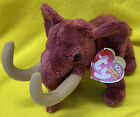 TY MWMT COLOSSO THE WOOLY MAMMOTH BEANIE BABY- 8