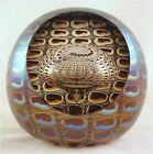 Tom Philabaum's Clear with Copper/Silver Reptilian Paperweight!!