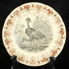 ANTIQUE VICTORIAN FRENCH SARREGUEMINES BROWN & BLACK TRANSFERWARE PLATE PEACOCKS