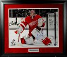 JIMMY HOWARD Signed Framed Detroit Red Wings 16 x 20 Photo & Nameplate