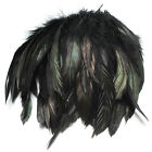 100pcs Black Fluffy Rooster Feather Fringe Decoration Home Craft DIY 6 8