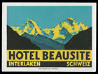 Hotel Beausite INTERLAKEN Switzerland Swiss vintage luggage label