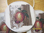 Fruit Coasters  by Pamela Gladding  CoasterStone Absorbant  Set of 4  Boxed
