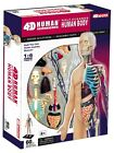 4D Master Human Anatomy - Half-Cleared Human Body Model