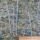 Cotton Quilt Sewing Fabric Autumn White Birch Trees Forrest 1 5/8 yd.