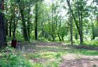 BEAUTIFUL SOUTHERN MISSOURI OZARKS 1 ACRE PRETTY AND PRIVATE JUST 150 MONTH