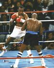 3118541475214040 1 Boxing Photos Signed