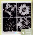 Studio112 clear stamps FLOWER INCHIES