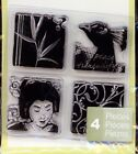 STUDIO112 clear stamps ASIAN INCHIES Peacock Bamboo Flourish