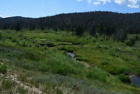 20 Acre Unpatented Placer Gold Mining Claim Grand Lake Mining District