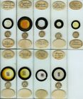 9 Plant Microscope Slides by E. Wheeler, sold by Watson