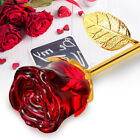 24K Gold Crystal Rose Dipped Flower Real Long Stem Valentines Day Love Gift
