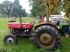 MASSEY FERGUSON 135 TRACTOR STRAIGHT ORIGINAL TRACTOR STRAIGHT FROM WORK CHEAP
