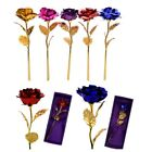 Rose Flowers 24K Gold Plated Valentines Mothers Day Girlfriend Gift Home Decor