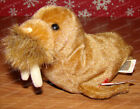 Paul the Walrus (Ty Beanie Babies Collection) PE Pellets, February 23, 1999
