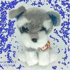 WHISKERS the Schnauzer Glitter EyesTY Beanie Boos 6 in TY Beanie Boos WITH/TAGS