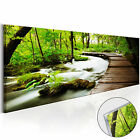 Acrylic Glass Print Image Wall Art Picture Photo Forest Landscape c B 0161 k a