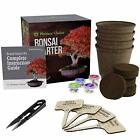 Bonsai Starter Kit Seed Guide Complete Kit to Easily Grow 4 Bonsai Trees