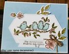 ANY OCCASION Handmade Card Kit STAMPIN UP FREE AS A BIRD Birthday Flowers