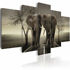 ELEPHANT Canvas Prints Framed Wall Art Picure Photo Image 020116 26