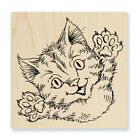 STAMPENDOUS RUBBER STAMPS CAT ATTACK NEW wood STAMP