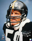 Pittsburgh Steelers Collecting and Fan Guide 73