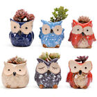 6pcs Mini Ceramic Plant Pot Owl Succulent Flower Planter Bonsai Box Garden Home