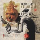 Mullmuzzler 2 by James LaBrie