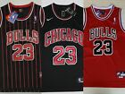 Chicago Bulls Collecting and Fan Guide 13